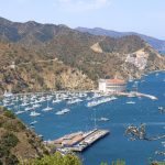 Catalina Island Golf Cart Tour Rental